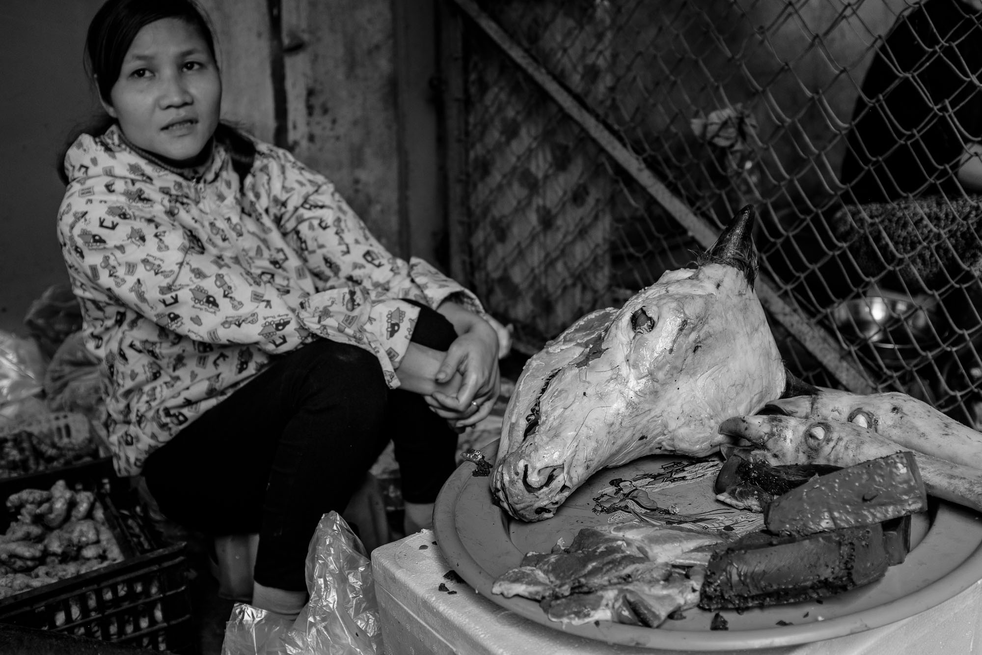 A dead animal head on a plate with the vendor sitting behind it